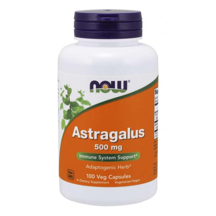 Astragalus 500 mg 100 Veg Capsules