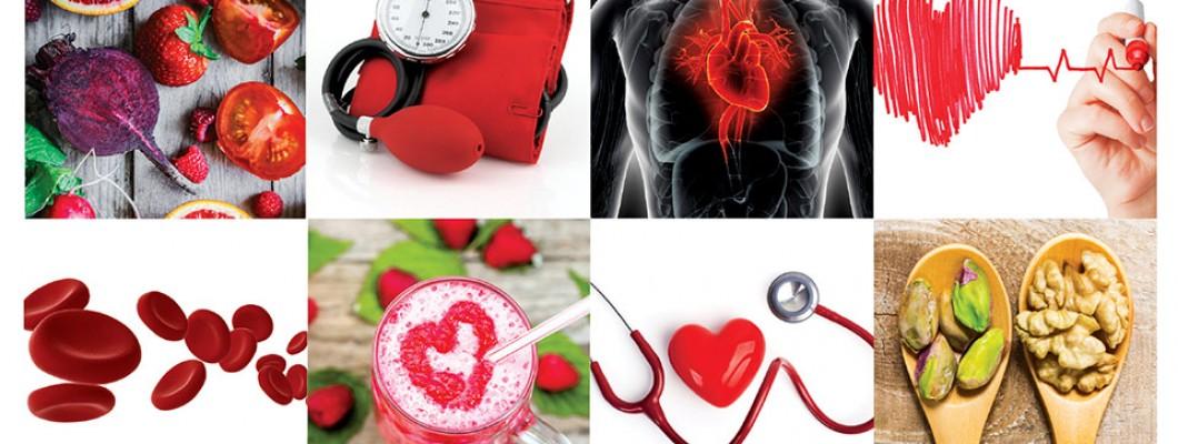 Szív Egészség