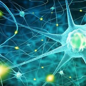 Neurotranszmitter