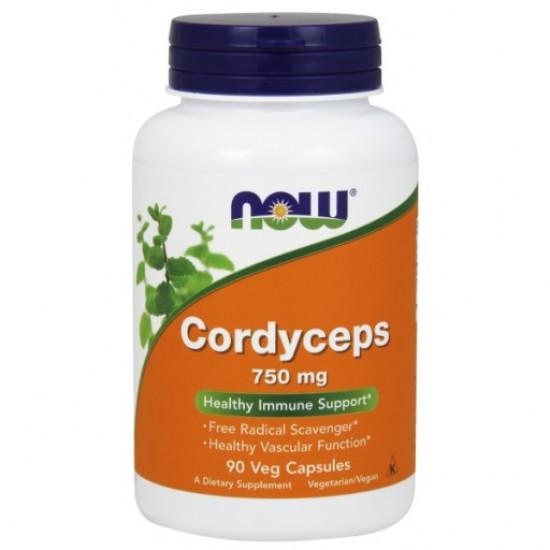 Cordyceps 750 mg - 90 Veg Capsules