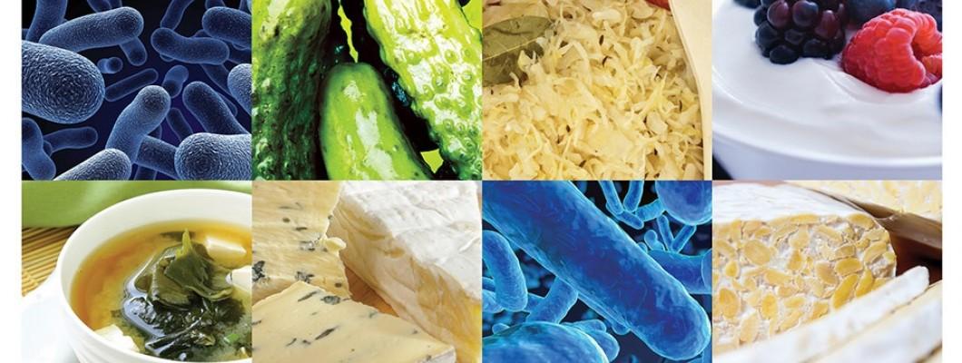 Mik a probiotikumok? Probiotikumokról.