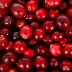 Cranberry - Tőzegáfonya: húgyúti gyulladásokra